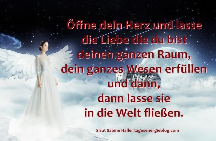 12-18-angel-1538938_1280