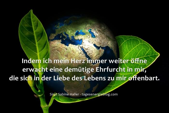 12-6-earth-405096_1920