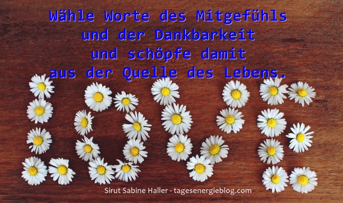 1-4-daisy-1403042_1920