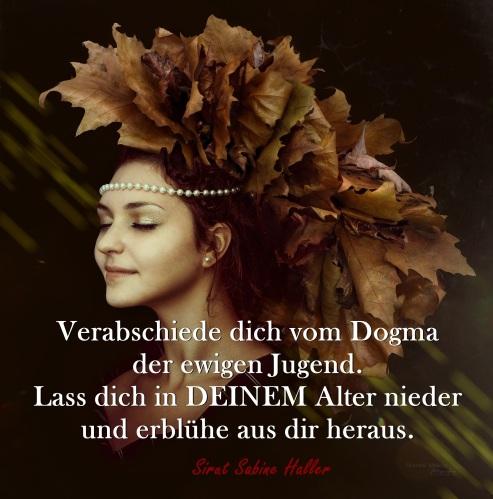 2-2-autumn-1773794_1920
